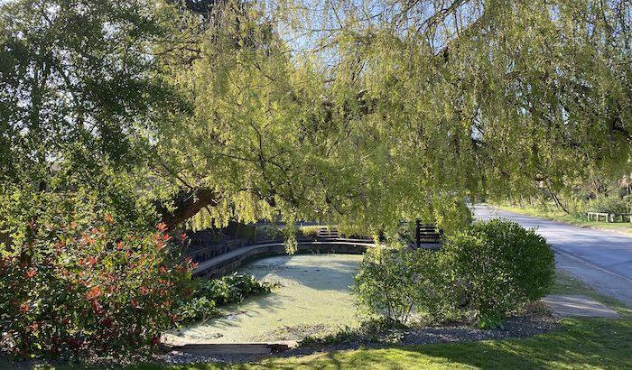 Littleton Pond